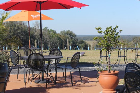 Brooksville, FL: Patio