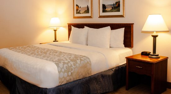 Springdale, Ohio: Guest room