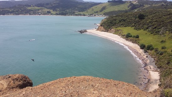 Dargaville, New Zealand: From the walkway looking towards Omapere