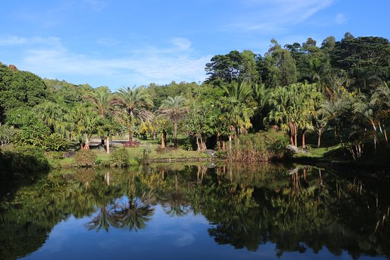 Lakaz Chamarel Exclusive Lodge: Vue depuis Reshma