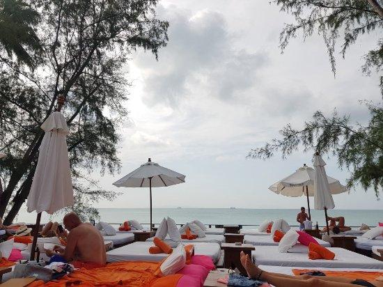 Nikki Beach Resort & Spa: 20180106_122004_large.jpg
