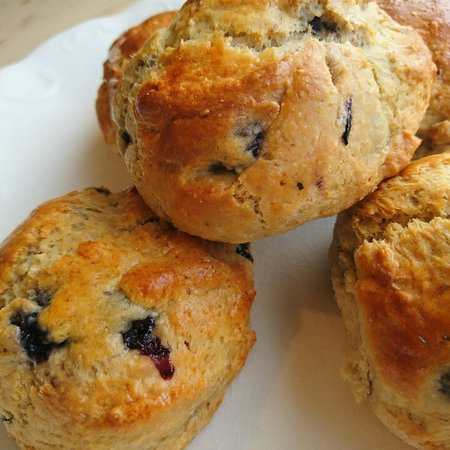 Bedale, UK: Blueberry scones