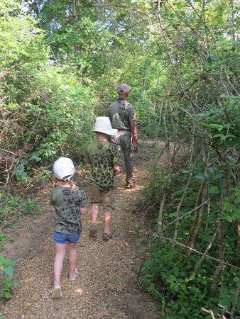 Wilpattu National Park, Sri Lanka: Nature Walks
