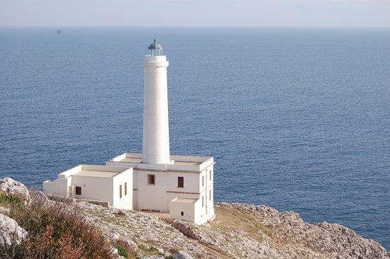 Museo Su Ecologia degli Ecosistemi Mediterranei