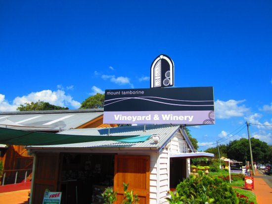 Tamborine vineyard and winery