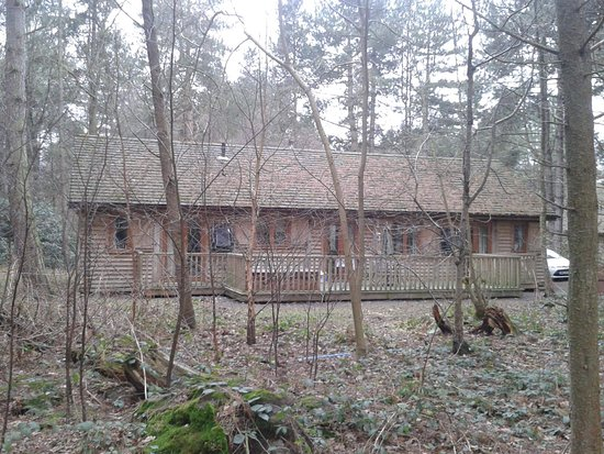 Flaxton, UK: Lodge 24