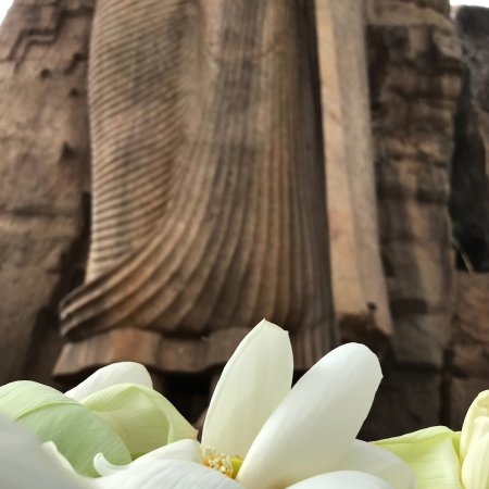 North Central Province, Sri Lanka: Avukana Buddha is the most beautiful place in the Universum. Very calm and Buddha statue is amaz