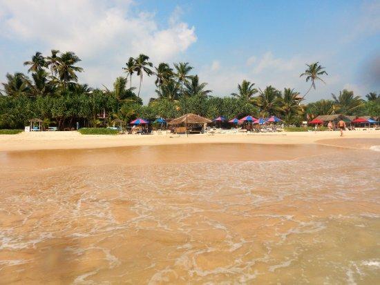 Habaraduwa, Sri Lanka: Mumbo Jumbo from the sea