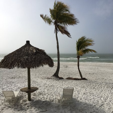 Tiki On The Beach: photo0.jpg
