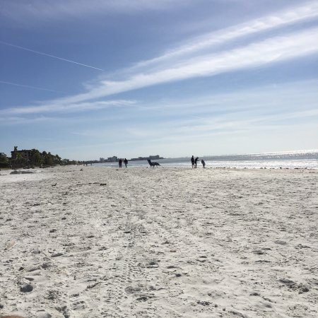 Tiki On The Beach: photo1.jpg