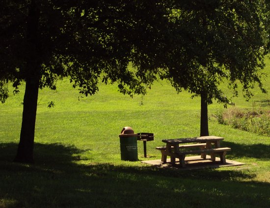 Pinckneyville, IL: picnic area at the lake