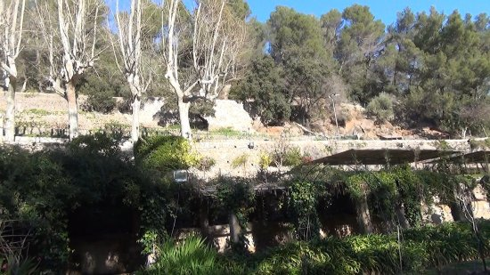 Esporles, Spain: Gartenanlage - Spektakel im Garten