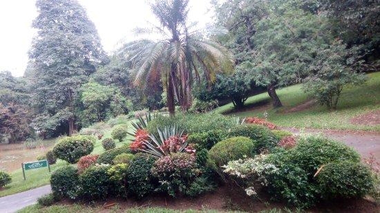 Royal Botanical Gardens: В саду