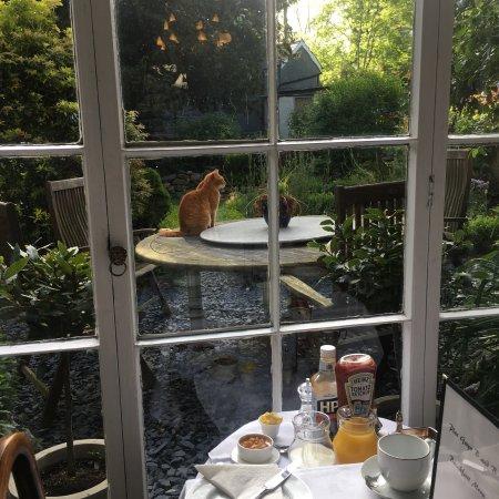 Plas Gwyn B&B & Cottage : photo3.jpg