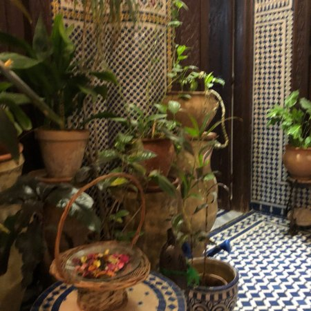 Riad Dar Cordoba: photo5.jpg