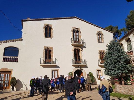 Alella, Spanyol: 20180116_124939_015_large.jpg