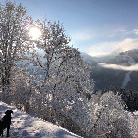 Brixen im Thale, Austria: Bergpension Zinting