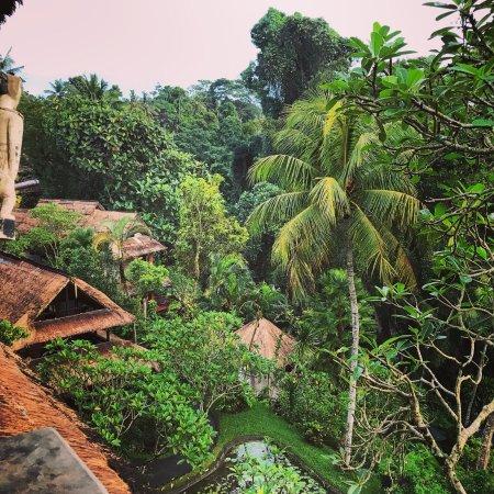 Hotel Tjampuhan & Spa: photo4.jpg