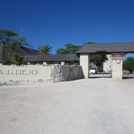 Etosha National Park, Namibia: photo6.jpg