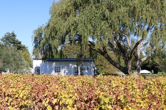 St Leonards Vineyard Cottages: The Woolshed