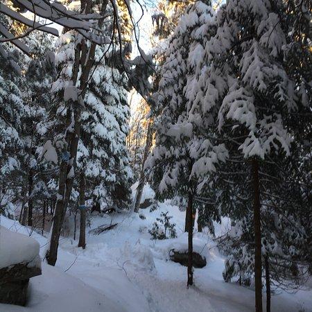 Val David, Canada: photo4.jpg