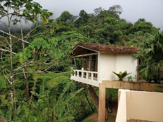 Rio Magnolia Nature Lodge: IMG_20180108_163346_large.jpg