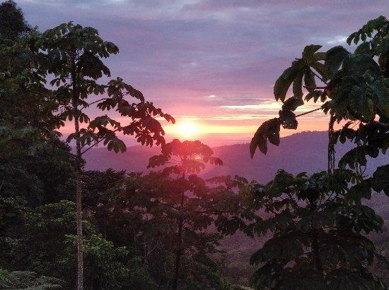 Rio Magnolia Nature Lodge: IMG_20180107_173014_large.jpg