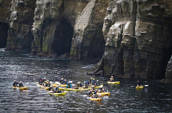 La Jolla Sea Cave Kayak Tour for Two