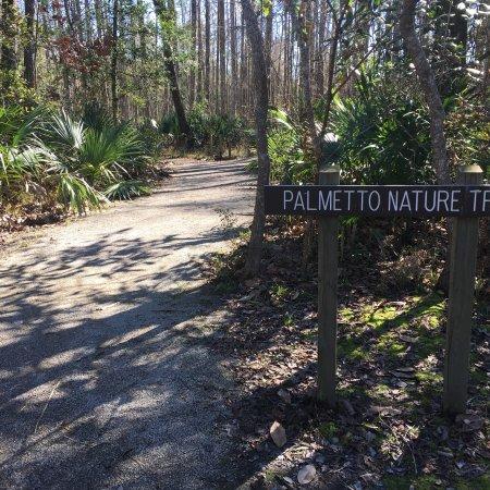 Palmetto Island State Park Abbeville La