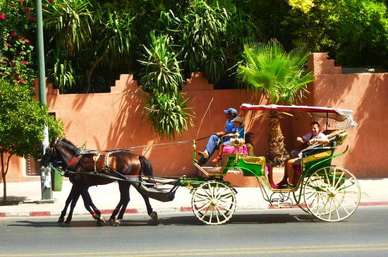 Horse Carriage Ride with Majorelle...