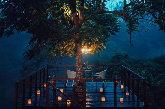 Forest Dining at Tree Deck overlooking lush valley of Ubud
