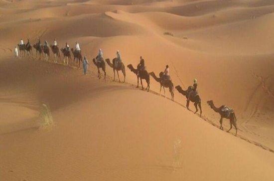 Excursão pelo deserto: visita guiada...