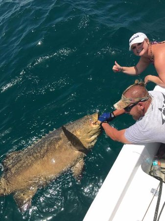 Port Saint Lucie, FL: client posing with their Goliath Grouper!