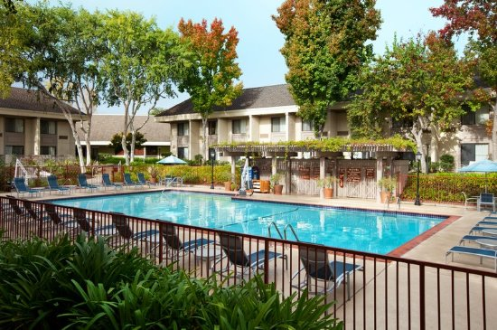 Sheraton Sunnyvale Hotel  N Mathilda Ave Sunnyvale Ca