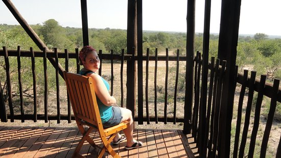Klaserie Private Game Reserve, Republika Południowej Afryki: View from the treehouse suite