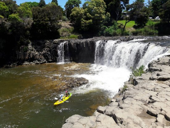 Kerikeri, Nueva Zelanda: VISIT THE WATERFALLS, FEED THE CHOOKS AT PAIHIA