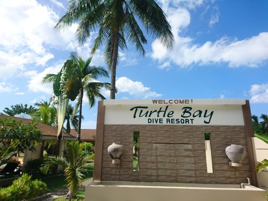Turtle Bay Dive Resort: Welcome!