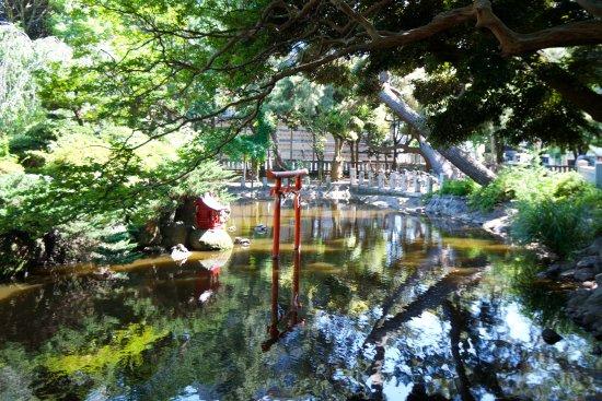 Hiratsuka Hachimanguu Shrine: One of the pretty ponds in the garden