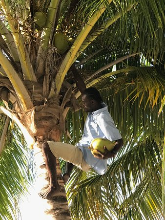 Las Terrazas Resort: Leroy making the stay more fun for all of us!