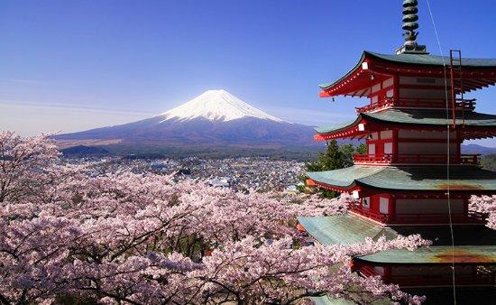 Excursiones Fujiyama