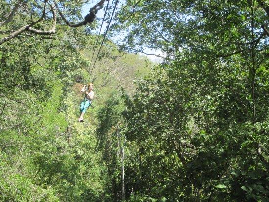 Artola, كوستاريكا: ziplining in the trees