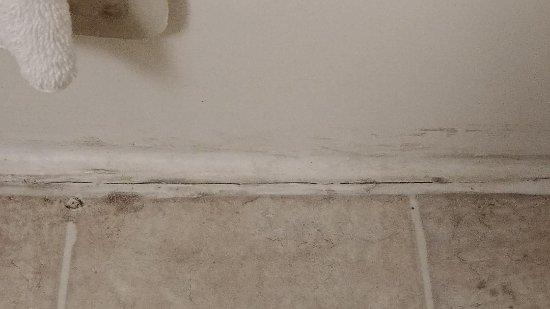 Lakepoint Resort State Park: Mold around bathroom