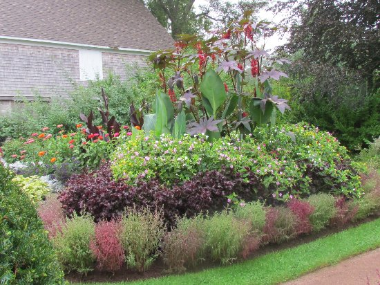 Annapolis Royal Historic Gardens: One of the flower beds
