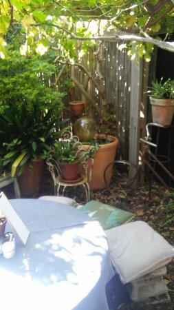 Claremont, África do Sul: Fascinating garden