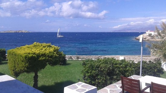 Poseidon Hotel - Suites: Just outside our patio window..