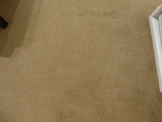 Cleopatra Mountain Farmhouse: Stains on carpet