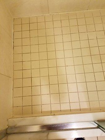 Pier Sixty-Six Hotel & Marina: Shower Floor