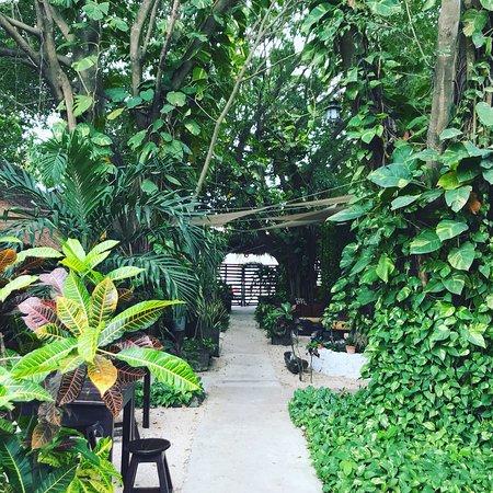 Secret Garden Hotel : photo0.jpg