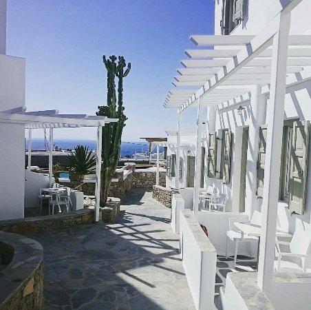 Damianos Hotel: _20180117_152813_large.jpg