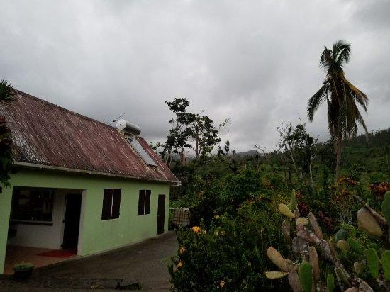 Marigot, Dominika: 20180113_180402_large.jpg